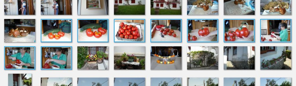 capture picasa tomates